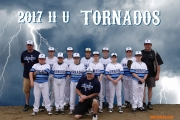 <h5>2017 Tornados 11U Team</h5>